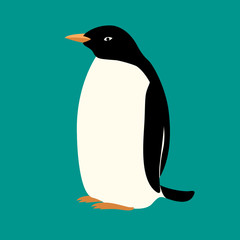 Penguin vector illustration isolated Flat Style