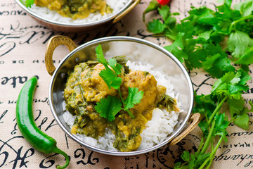 Chicken and Spinach Curry. Indian cuisine