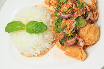 Close up of Thai cuisine mix spicy fried chicken with rice