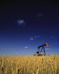 Oil Pump In Wheat Field