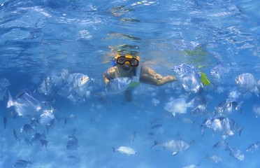 Girl Snorkeling In The Caribbean