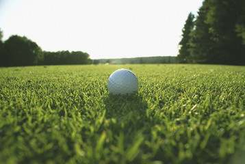 Golf Ball On Organic Golf Course; Canada, Manitoba, Riding Mountain National Park