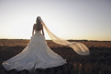 St. Catharines, Ontario, Canada; A Bride Standing In A Field With Her Veil Blowing In The Wind