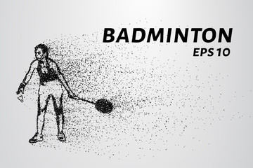 Badminton of particles. Badminton consists of small circles. Badminton into smaller molecules. Vector illustration