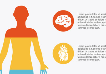 4-Section Human Body Infographic and Anatomical Icon Set