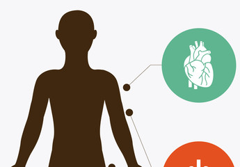 Human Body Infographic and Anatomical Icon Set 1