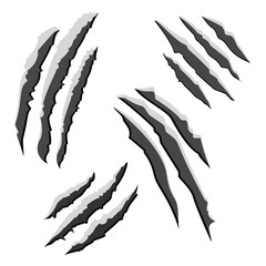 Set of black claw scratches isolated on white background. Vector illustration
