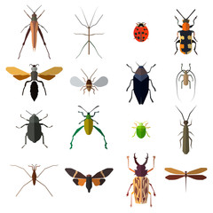 Insect icons set isolated on white. Vector illustration