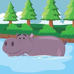 hippo soaking vector illustration design