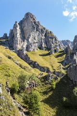 Paesaggio alpino