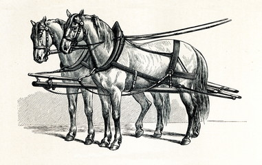 Horse harnessing (Rationelles Arbeitsgeschirr) (from Meyers Lexikon, 1895, 7/432/433)