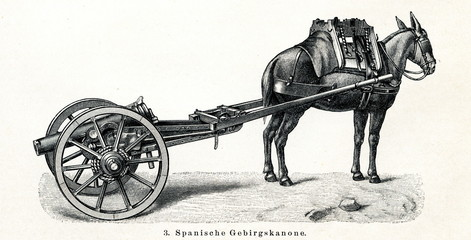 Spanish mountain gun transported by mule (from Meyers Lexikon, 1895, 7/440/441)