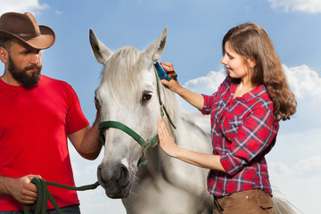 Young woman brushing beautiful white horse