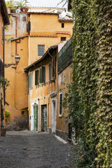 Vegetation and architecture in Trastevere, Rome.