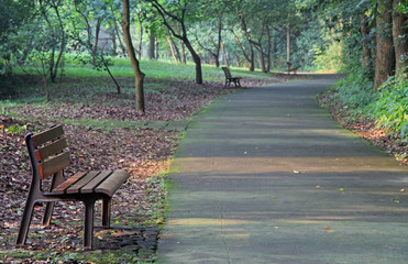 wooden benches in park of Hangzhou