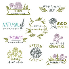 Set of logo templates  with hand drawn plants and flowers