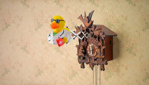 Doctor Rubber Duck coming out of cuckoo clock
