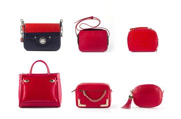 group of color leather purses and handbags isolated on white background