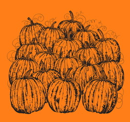 ink pumpkins on orange background