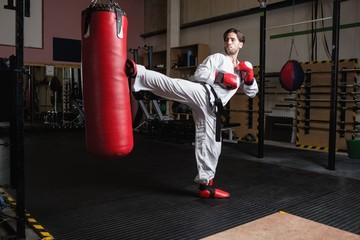 Man practicing karate with punching bag
