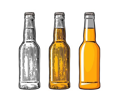 Beer bottle. Color engraving and flat vector illustration
