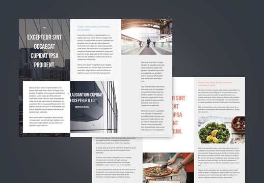 Professional Trifold Brochures