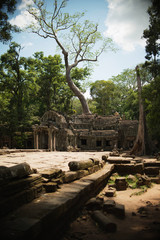 A temple emerges from the Cambodian jungle in the Angkor Wat temple complex; Siem Reap, Cambodia