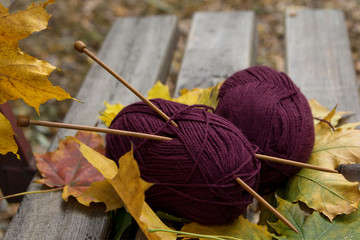 Yarn and knitting needles are on bench in the park.