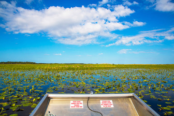 Riding in the Everglades - the natural region of wetlands in the