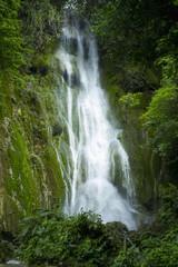 Waterfall over moss covered cliff; Tanna Island, Vanuatu