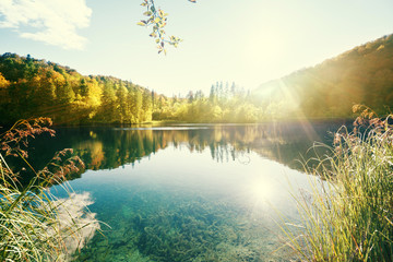 Photo sur Plexiglas Lac / Etang lake in forest, Croatia, Plitvice