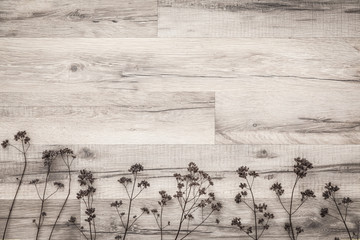 Dried flower's twigs on wooden background.