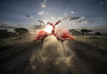 Composición de flamencos retorcidos