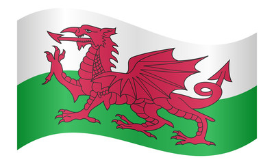 Flag of Wales waving on white background