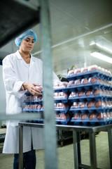 Female staff arranging egg carton next to production line