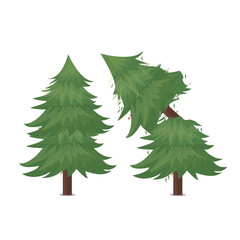broken pine tree vector illustration