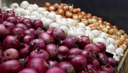 Variety of onions in red, white and brown for sale in market