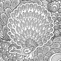 Coloring page for adults with Peacock vector illustration