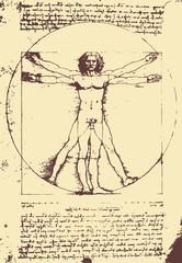 Vitruvian Man illustration / Leonardo da Vinci [vector]