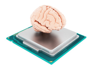 Microprocessor and human brain. 3D illustration