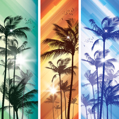 Wall Mural - Palm trees at sunset.