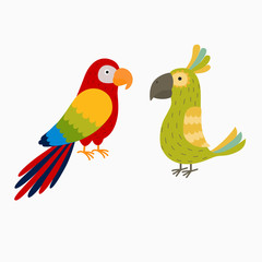 two bright parrot