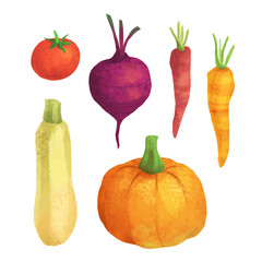 Cute vegetable collection on white isolated background. Organic food autumn set with pumpkin, carrot, squash, tomato and beetroot.