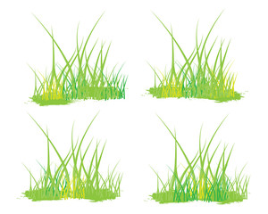 grass vector design