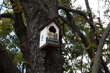 Small house for birds. Birdhouse.