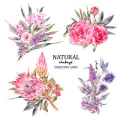Set of vintage floral vector bouquet roses, protea