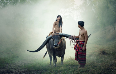 Couple farmer in farmer suit with buffalo on fields