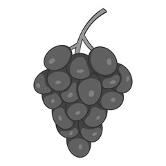 Grapes icon. Gray monochrome illustration of grapes vector icon for web