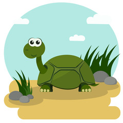 Cartoon turtle smiling stroll among the green grass. Vector illustration with colorful background.