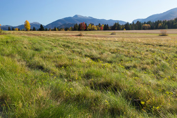 A meadow land in near High Peak wilderness in Adirondack mountains, NY